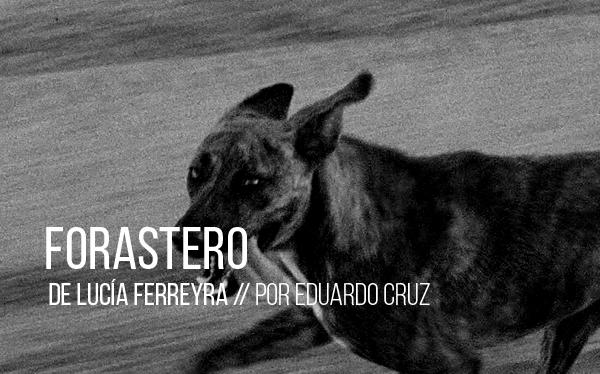 Forastero de Lucía Ferreyra