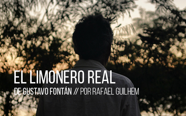 El limonero real de Gustavo Fontán