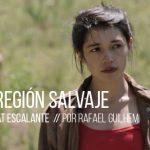 Miniaturas_La region salvaje