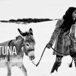 Miniaturas_Fortuna