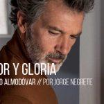 Miniaturas_Dolor y gloria