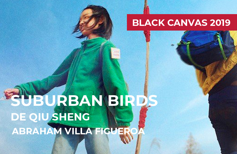 Black Canvas 2019: Suburban Birds de Qiu Sheng