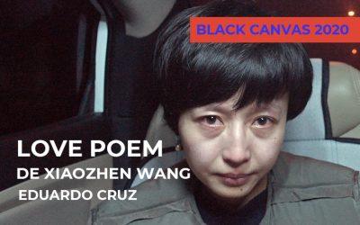 Love Poem copia