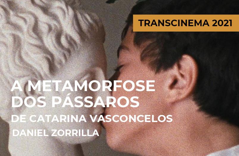 Transcinema 2021: A Metamorfose dos Pássaros de Catarina Vasconcelos