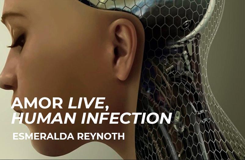 Amor live, human infection